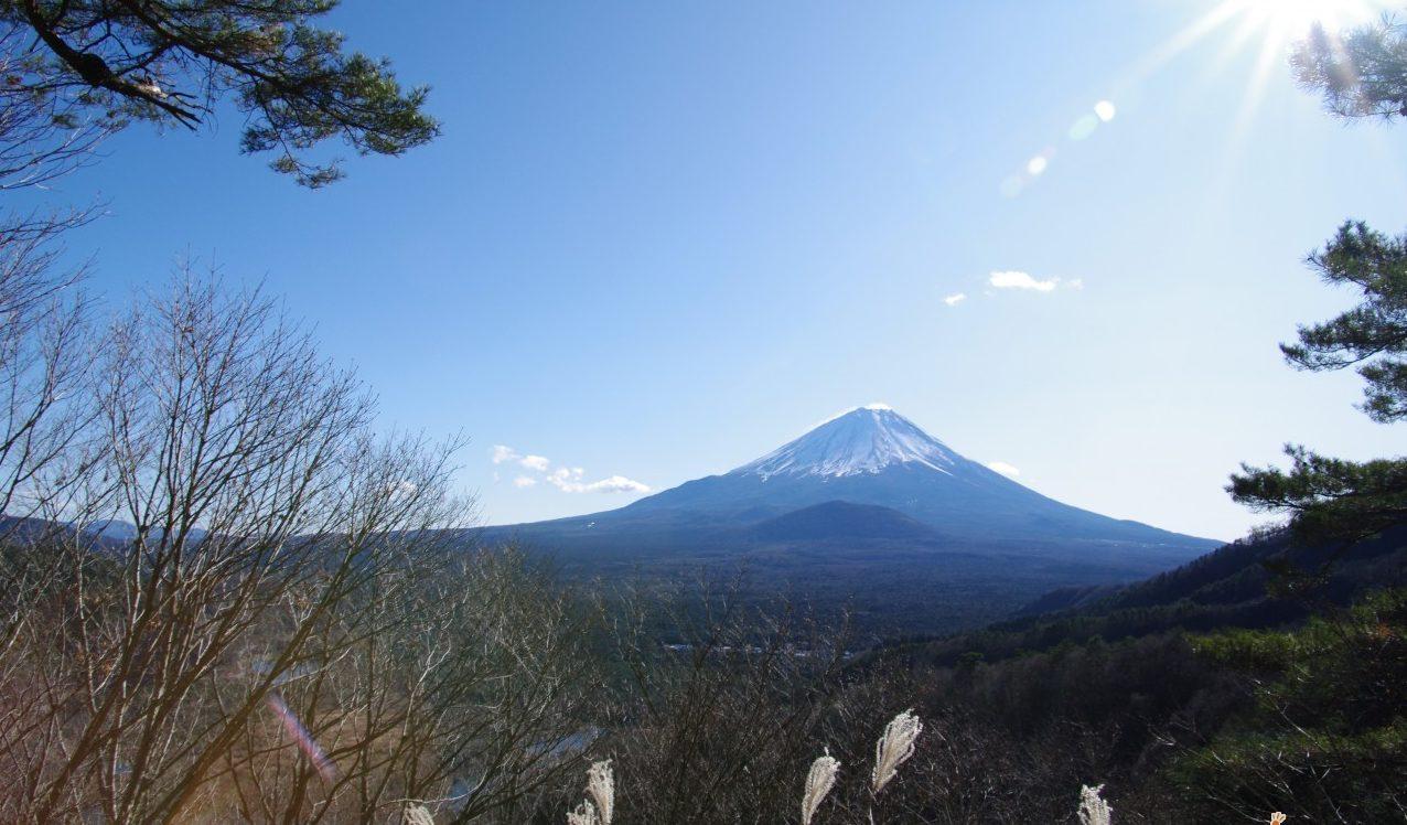 7 Days Osaka - Tokyo Excitement
